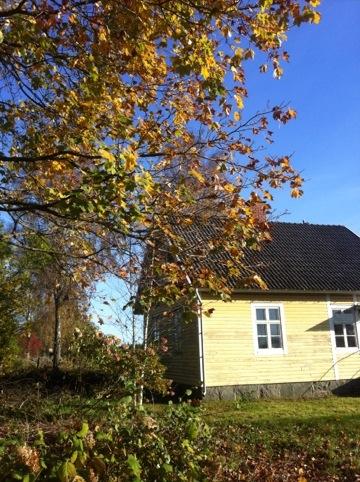 20111017-182455.jpg