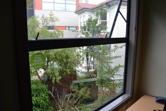 utsikt från mitt fönster