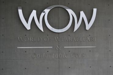world of wearablear arts